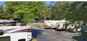 RV roof view with trees 640x300